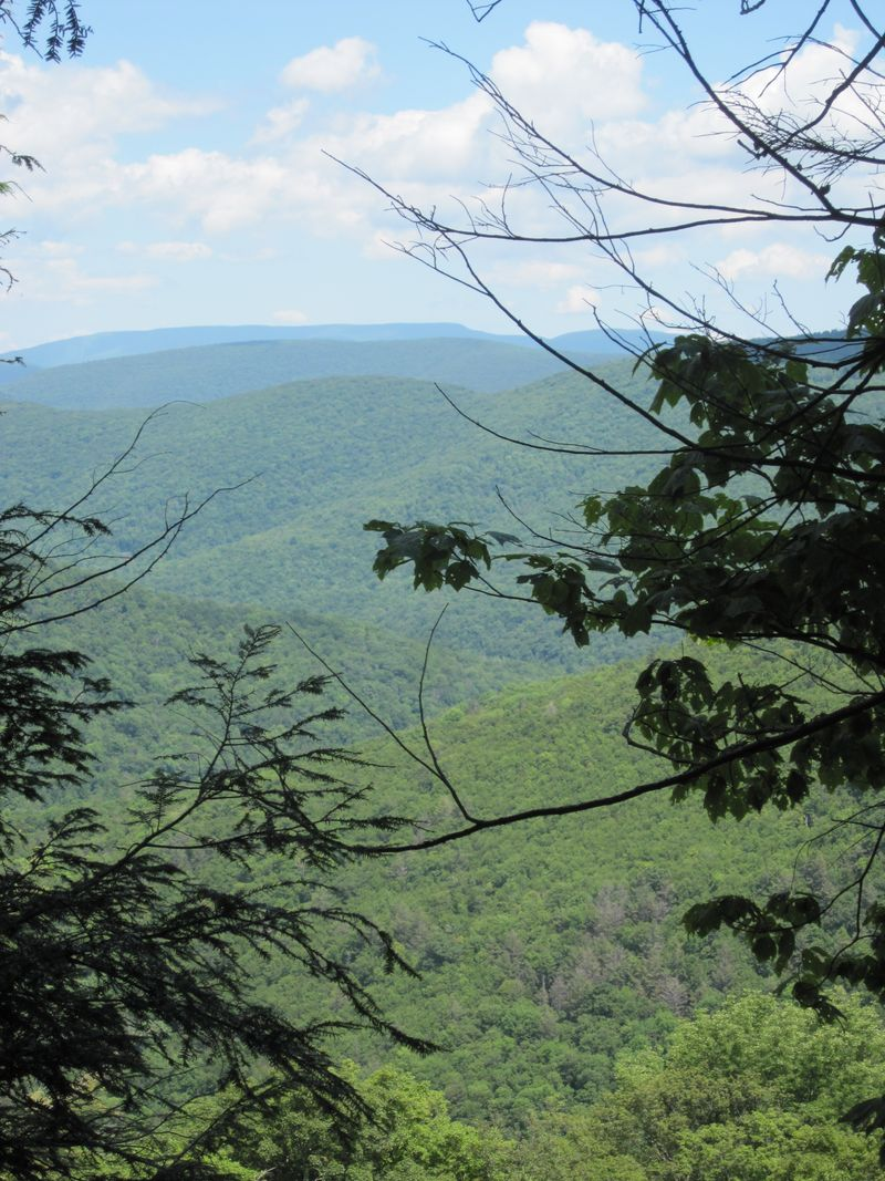 Catskill Mountain 021