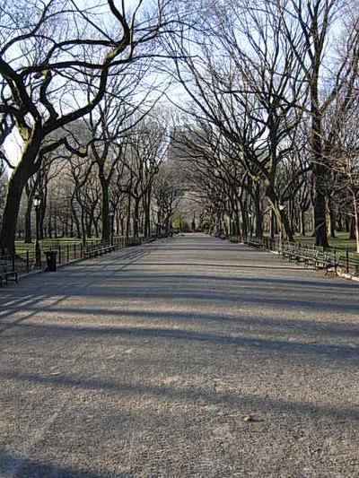 Nyc_central_park_025